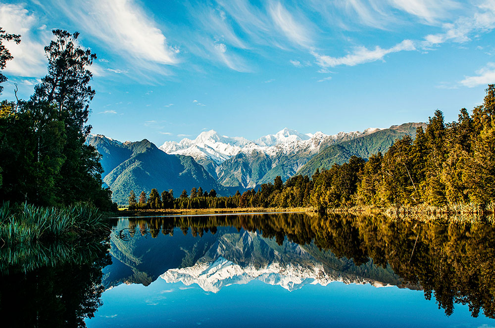 Wild Adventures in New Zealand