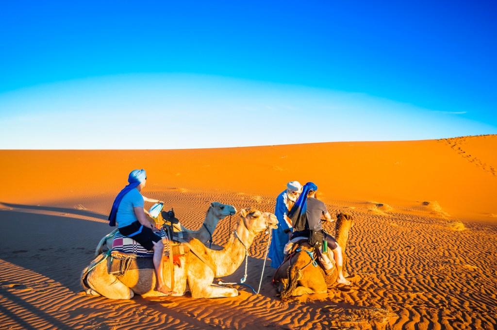 Camel trek in the desert of Morocco