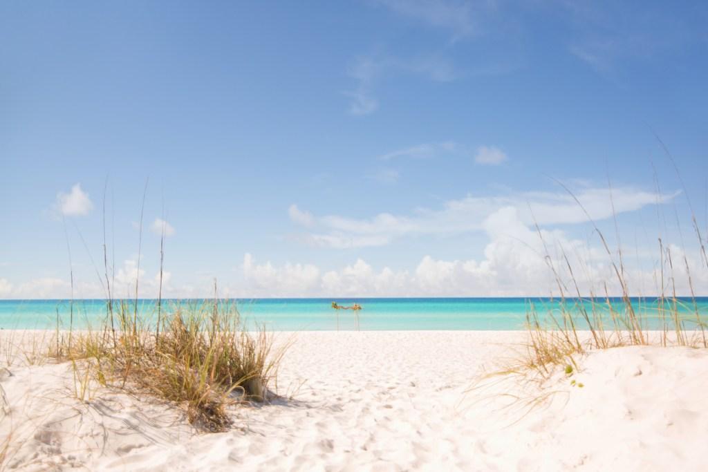 The beach dunes of Panama Beach