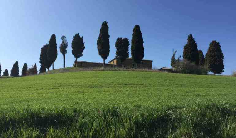 Well Worth the Splurge: Adler Thermae in Tuscany, Italy