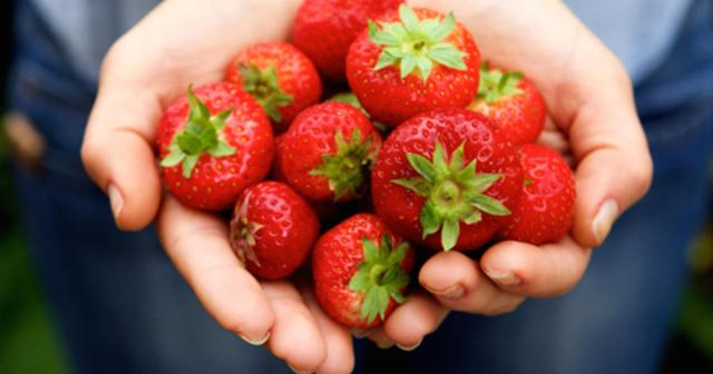 Image result for xylitol in strawberries