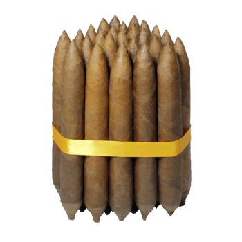 Salomon cigar