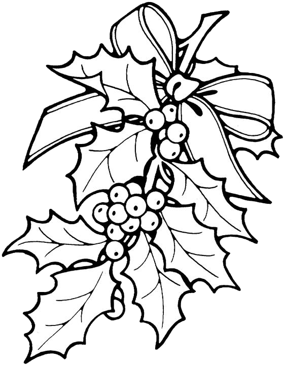 christmas holly coloring pages 1 purple kitty