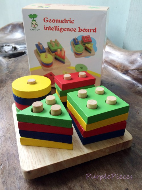 Geometric Intelligence Board Philippines