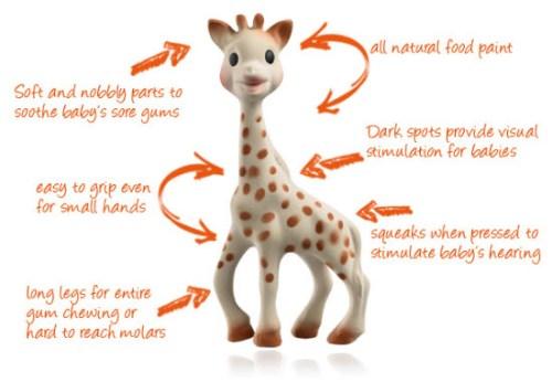 Sophie_Giraffe_Teethers_Diagram