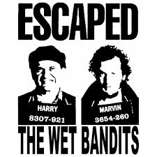 wet bandits 2