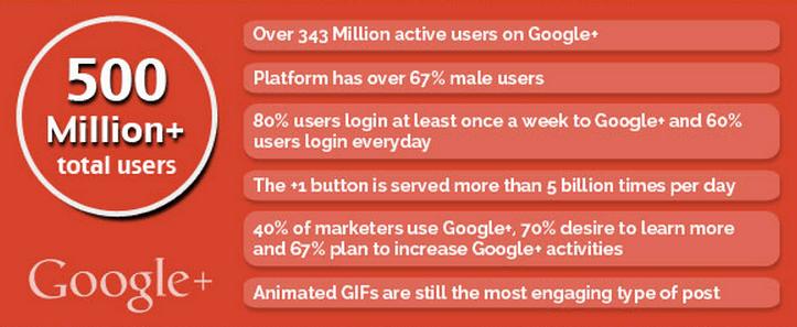 Google Plus Stats 2013