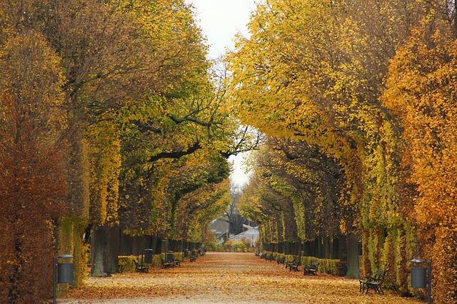 Vienna Park Austria