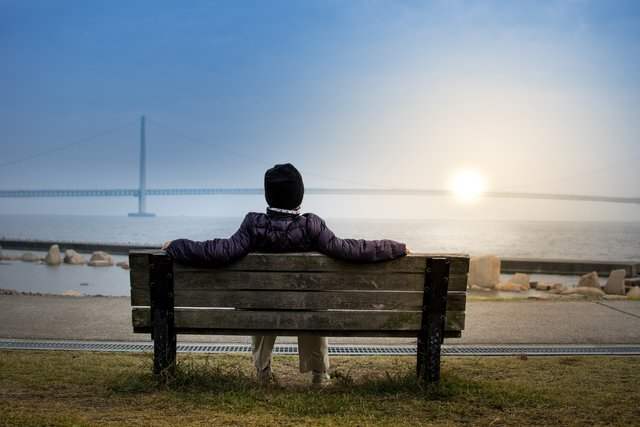 guarantee personal growth through self reflection, person sitting on bench a busy bee's life