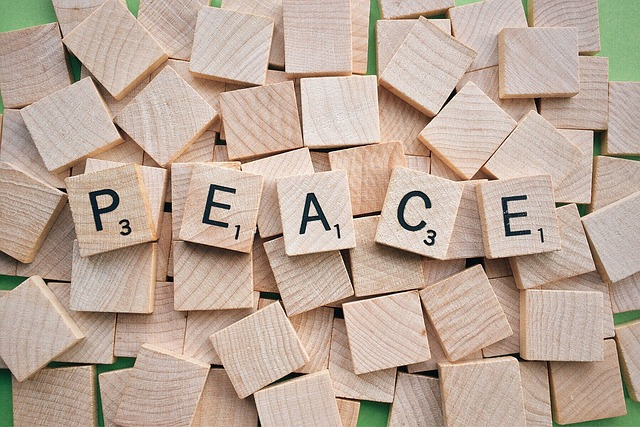 improve your vocabulary and transform your life peace