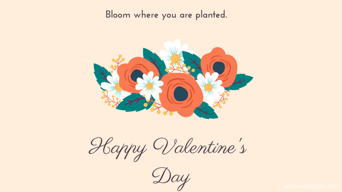 Free Valentine's Day Desktop Wallpapers, Happy Valentine's Day, Always bloom where you are planted, Purposefulhabits.com