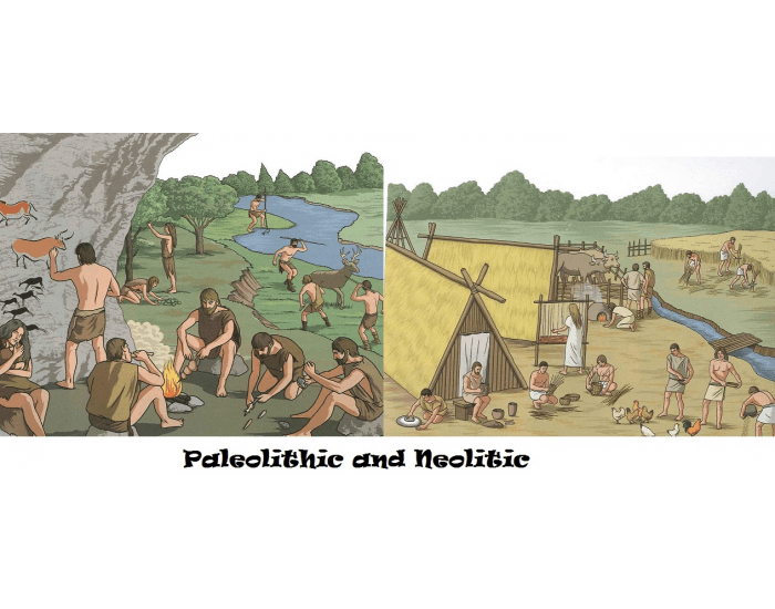 Paleolithic And Neolithic Characteristics