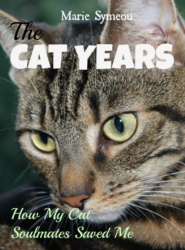 The Cat Years