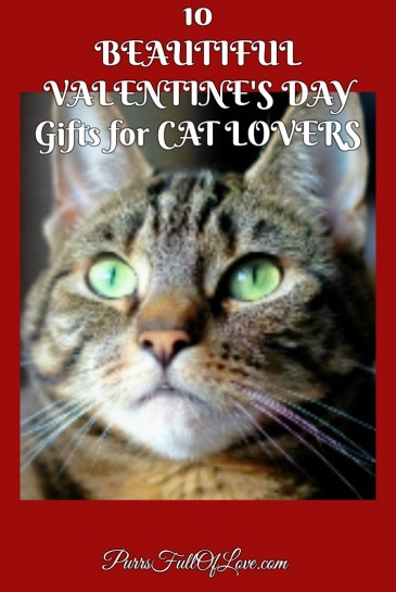 10 Valentine's Day Gifts for Cat Lovers from Zazzle