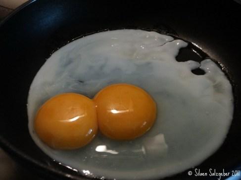 telur ayam kembar