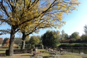 Beginilah Penampilan Pohon-pohon di Musim gugur. Kurpark, Bad Rappenau, Jerman