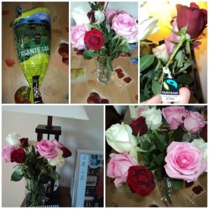 Fairtrade-Rose (Foto: dok. pribadi). Membeli Bunga Sekaligus Berdonasi