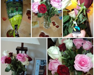 Fairtrade-Rose