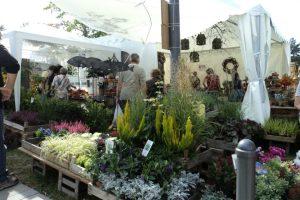 Tanaman-tanaman Hias yang membuat Lapar Mata