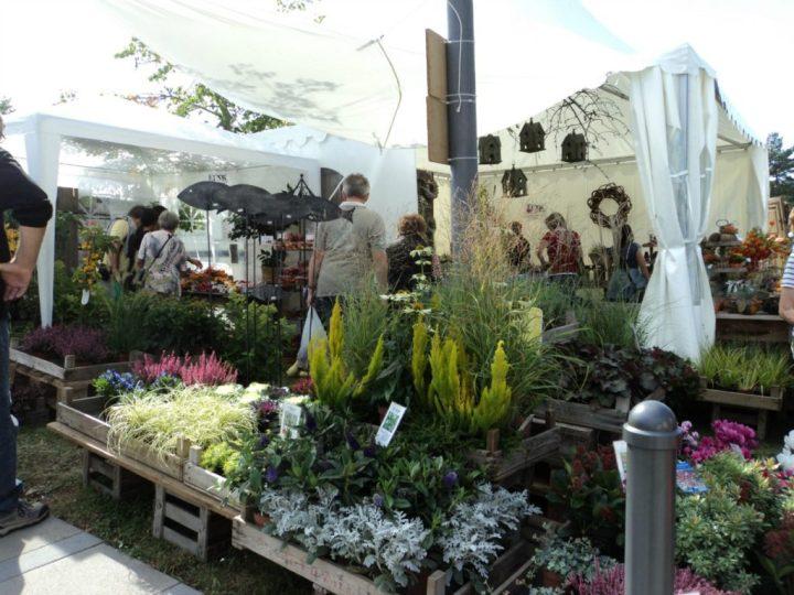 Barang-barang yang di Jual di Pameran Flora