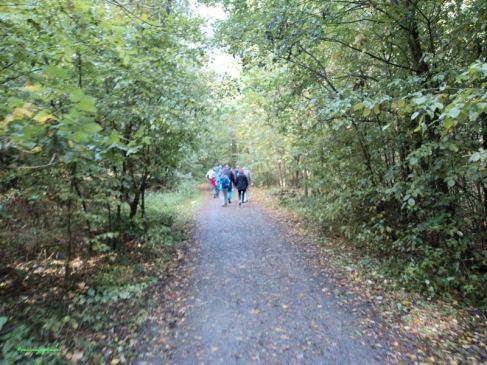 Jalan-jalan ke Hutan Yuk