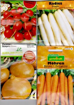 Bibit Benih Sayuran Seperti Lobak Putih dan Merah, Bawang Bombay dan Wortel