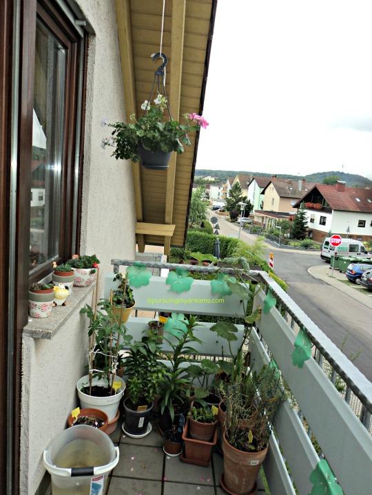 Balkon Depan Rumah. Beberapa Bunga masih ada yang belum Mekar