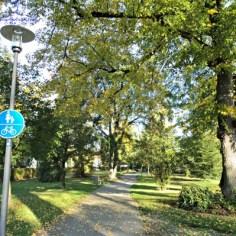 Udara segar dan bersih kalau di kota besar ada taman begini
