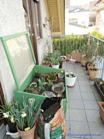 Balkonku