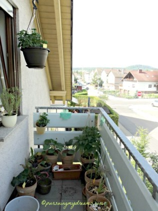 Sisi lain Balkon Depan. Geranium yang digantung tahan panas loh asal disiram pagi dan sore