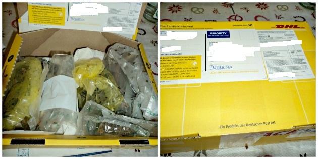 Paketnya Ilfa