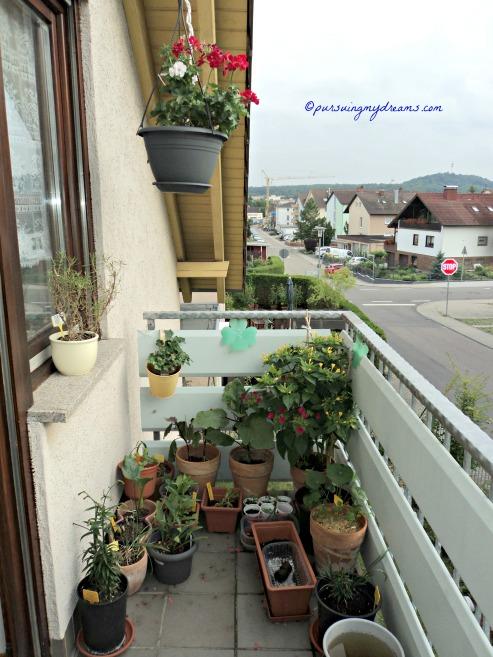 Balkon Belakang Rumah. Sudah Seminggu ini hujan melulu