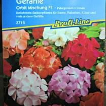 Bibit/benih Bunga Geranium Tegak