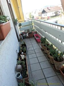 sisi lain balkon depan