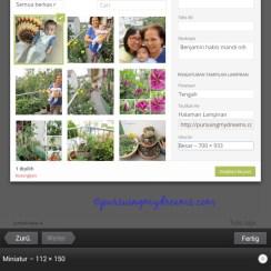 Pilih ukuran tampilan gambar blog