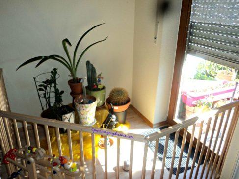Pakai pagar pengaman supaya anak tidak merusak tanamanku