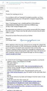 Google Team cepat tanggap kalau ada laporan kopas foto dan artikel blog