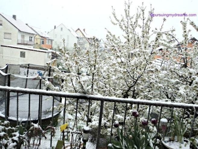 Ko bisa sih Salju di Akhir April loh?. Pemandangan dari balkon belakang. 26 April 2016