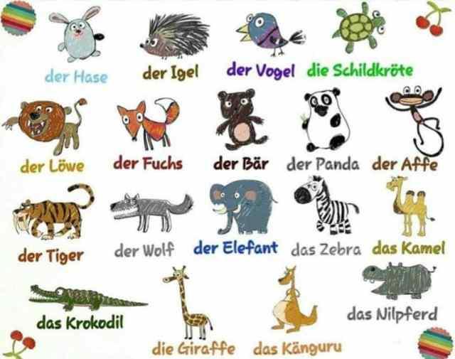 Die Tiere- Hewan dalam bahasa Jerman