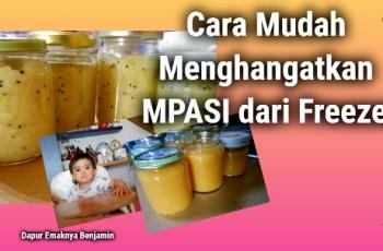 Cara Mudah Menghangatkan MPASI dari Freezer