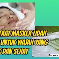 7 Manfaat Masker Lidah Buaya Untuk Wajah yang Cantik dan Sehat