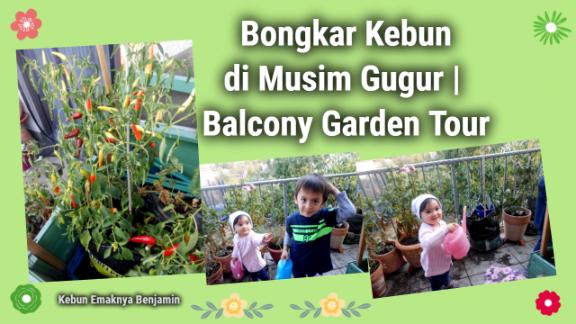 Bongkar Kebun di Musim Gugur   Balcony Garden Tour