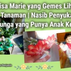 Lisa Marie yang Gemes Lihat Tanaman | Nasib Penyuka Bunga yang Punya Anak Kecil