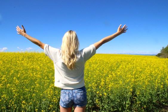 Canadian Yellow Fields
