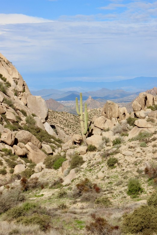 Tom's Thumb hike in Scottsdale, Arizona