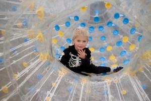 Halloween Adventure Fun- Pumpkin Patch & Corn Maze - Calgary, Alberta
