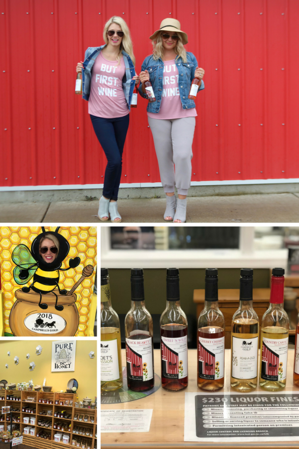 Where to visit in Abbotsford, British Columbia, Canada: Campbell's Honey and Mead Farm