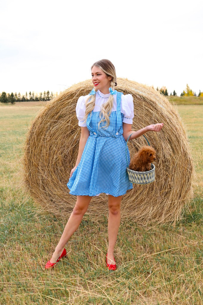 "'Toto, I've got a feeling we're not in Kansas anymore."" - Dorothy Halloween Costume from the Wizard of Oz - Awesome women's costume ideas #halloween #halloweencostume #costumeideas"
