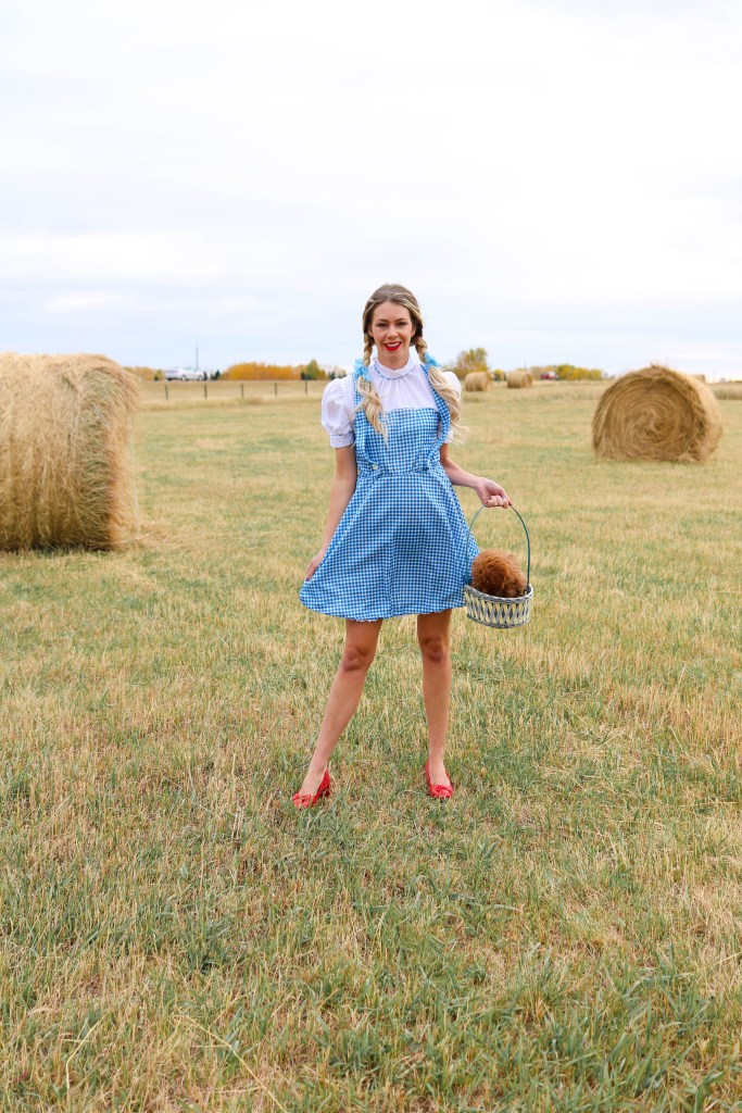 """'Toto, I've got a feeling we're not in Kansas anymore."""" - Dorothy Halloween Costume from the Wizard of Oz - Awesome women's costume ideas #halloween #halloweencostume #costumeideas"""