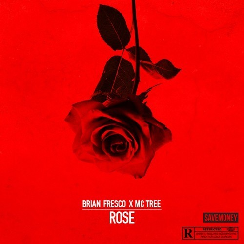 Brian Fresco Tree Rose